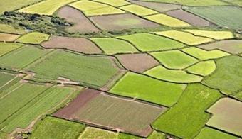 Tarım Arazilerinin Miras Yoluyla İntikal İşlemleri Başladı