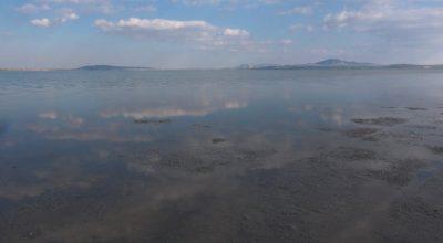 Son yağışlar Seyfe Gölü Kuş Cenneti'ne yaradı