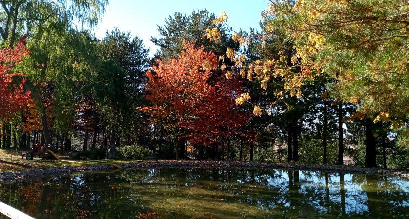 Japon Bahçesi Sonbaharla Rengarenk Görünüme Kavuştu