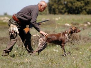 Artık avlanmak için avcı izin belgesi şart