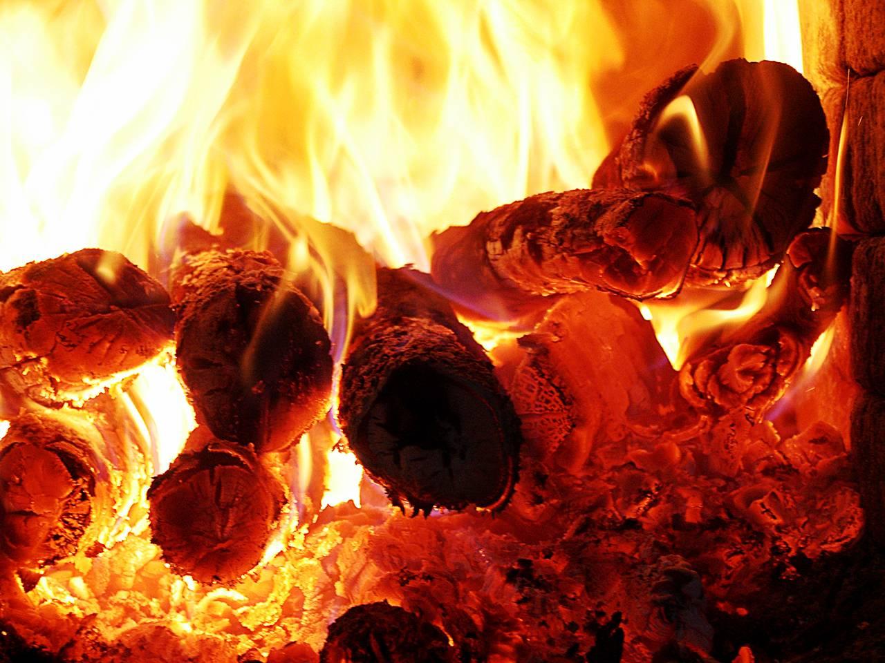 Pidecilerin sıcakla imtihanı